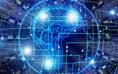 Our brains limit us: How Counseling with Empower Counseling in Birmingham, Alabama can help